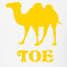 camel toe design 10 Reasons Why You Shouldnt Use Box Color