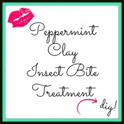 Peppermint-Clay-Insect-Bite-Treatment-DIY