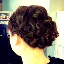Moderate Volume Updo w/ Braid