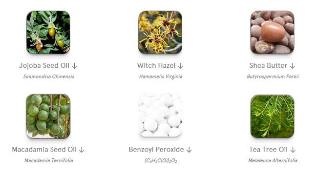 Create-Cosmetics-Tea-Tree-Lotion
